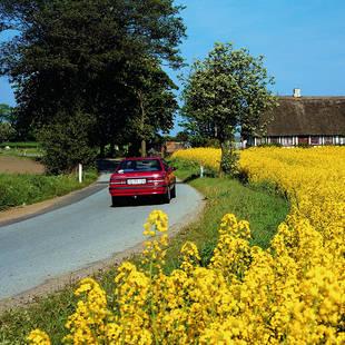 Autorondreis Denemarken
