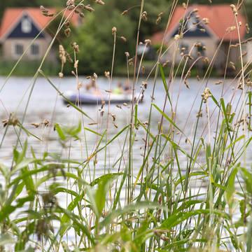 Recreatieplas Vakantiepark Het Timmerholt