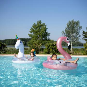 Zwembad Vakantiepark Center Parcs Le Lac d'Ailette