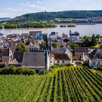 6 daagse riviercruise met mps Azolla en mps Salvinia Over de Rijn naar Rüdesheim