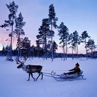 8 daagse vlieg busrondreis Dwars door Lapland