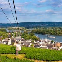 6-daagse riviercruise met mps Salvinia Over de Rijn naar Rüdesheim met mps Salvinia