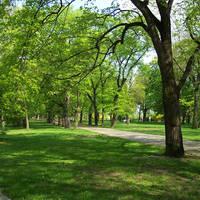 Vitkov park