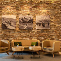 De Jong Intra Vakanties - Zwitserland - Davos - Hilton Garden Inn