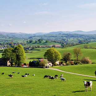 Landschap Zuid-England