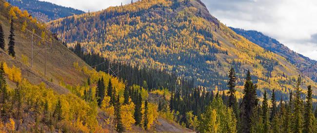 North Klondike Highway in Yukon Territory