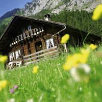 Alpenhut