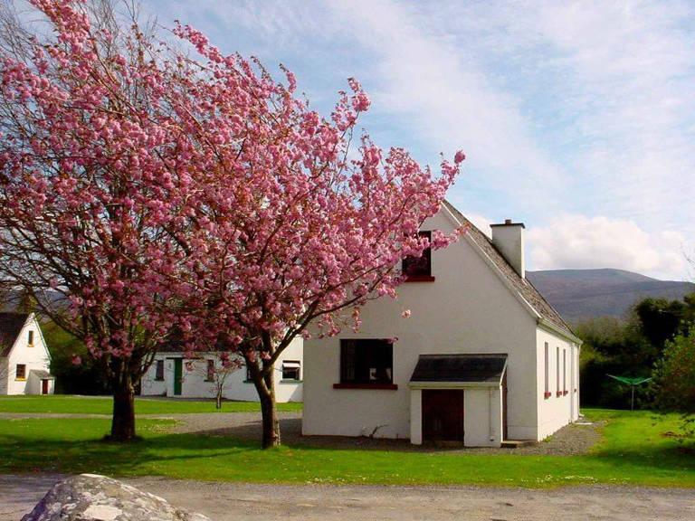 Vakantiepark Killarney Lakeland Cottages