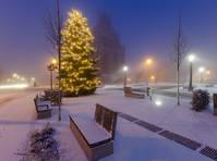 Prenzlau kerstboom