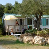 Sequioa Park Cottage Plus