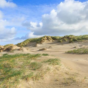 Duinen 3-daags arrangement 'Uitwaaien aan de kust' - Leonardo Hotel IJmuiden Seaport Beach
