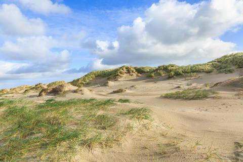 Heerlijke autovakantie Noord-Holland 🚗️3-daags arrangement 'Uitwaaien aan de kust' - Leonardo Hotel IJmuiden Seaport Beach