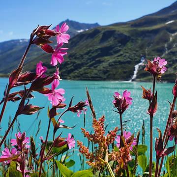 De Jong Intra Vakanties - Vorarlberg - Silvretta Alpenhotel Garfrescha