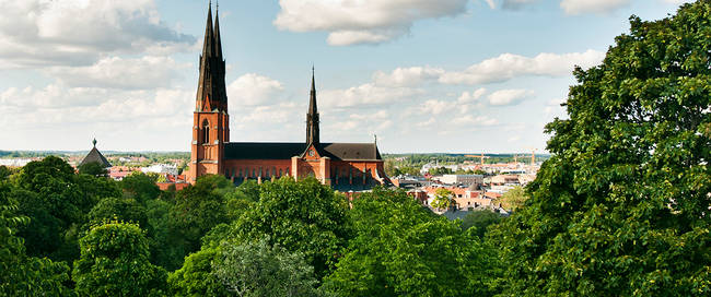 Kathedraal Uppsala - Foto: Samir Hadi