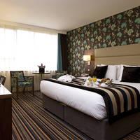 Leopold Antwerp room1