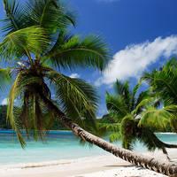 Baie Lazare Beach - Seychellen