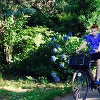 De Jong Intra Vakanties - Hoge Hexel - Bungalowpark Hoge Hexel