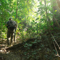 Jungle Trektocht