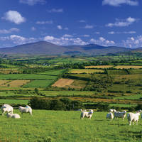 13-daagse vlieg-busrondreis All of Ireland