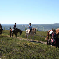 Geilo - paardrijden