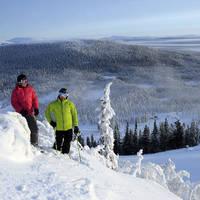 Skiers met overzicht