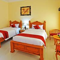 Voorbeeld deluxe kamer (twin)