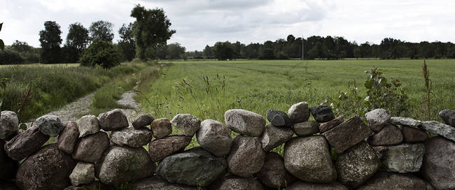 Landschap Öland - Foto: Tina Stafrén