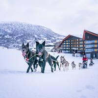 Huskysafari - Foto: Sverre F. Hjornevik