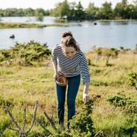 Besjes plukken - Foto: Elina Manninen / Visit Finland
