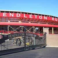 Pendleton Rodeo