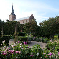 Odense kerk - Fotograaf: Kim Wyon