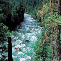 Rafting in the Canadian Rockies
