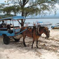 Lokaal vervoer op Lombok