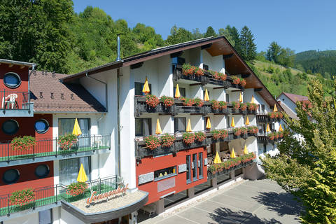 Fantastische vakantie Baden Wurttemberg 🚗️Hotel Sonnenhof