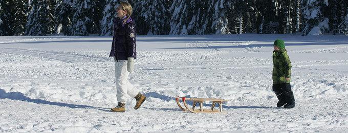 Wintersport Harz