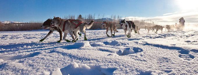 Wintersport Salla