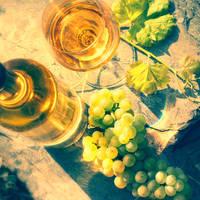 Neustadt an der Weinstrasse - Wijn