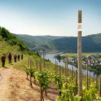 HiRes_Mosel_so_035_Cochem