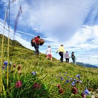 De Jong Intra Vakanties - Vorarlberg - Silvretta