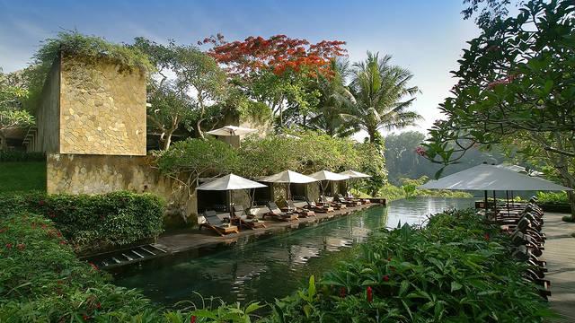 Zwembad Maya Ubud