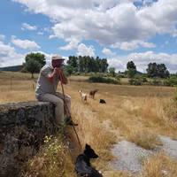 Herder nabij Belmonte