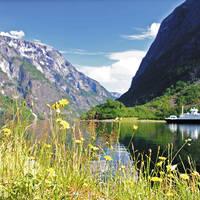 Sognefjord in bloei