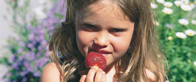 Hardanger meisje met fruit