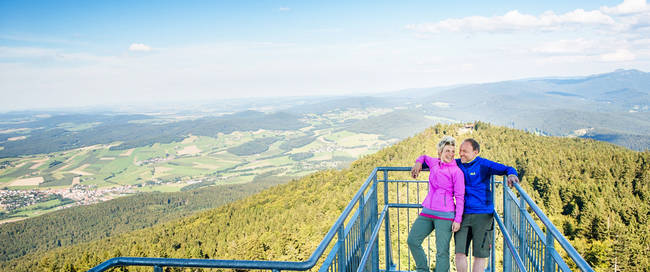Omgeving Neukirchen, Beierse Woud