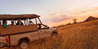 10-daags safari arrangement Speciale Actie Sefapane Kruger Safari