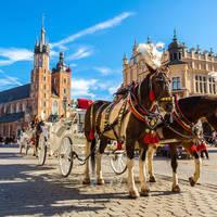 8-daagse busreis en 6-daagse vlieg-busreis Historisch Krakau boeken Steden Polen doe je het beste hier