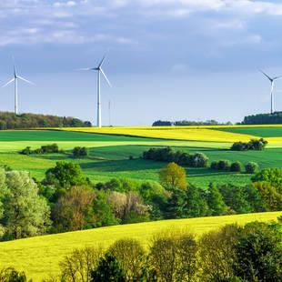 Landschap Belgie