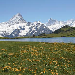 Lente in Zwitserland