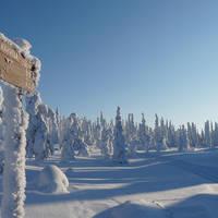 Salla Winterwonderland