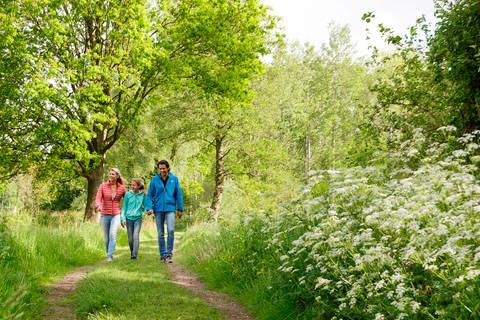 Fantastische vakantie Limburg (Belgie) 🚗️Vakantiepark Center Parcs Erperheide